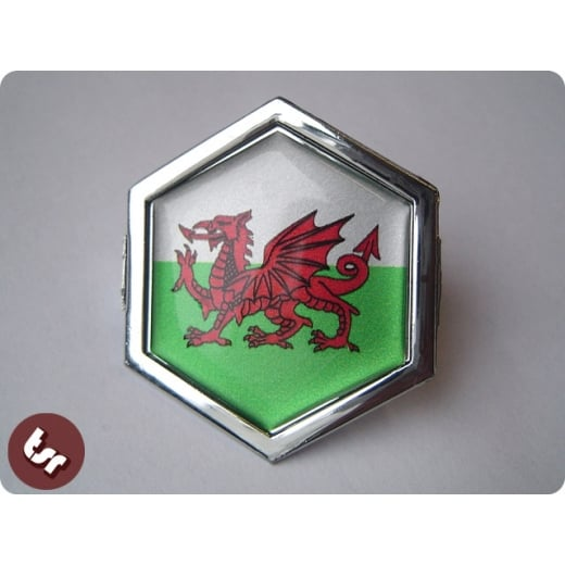 VESPA TSR Horncast Hex Badge PX/LML/T5 Wales/Welsh Flag